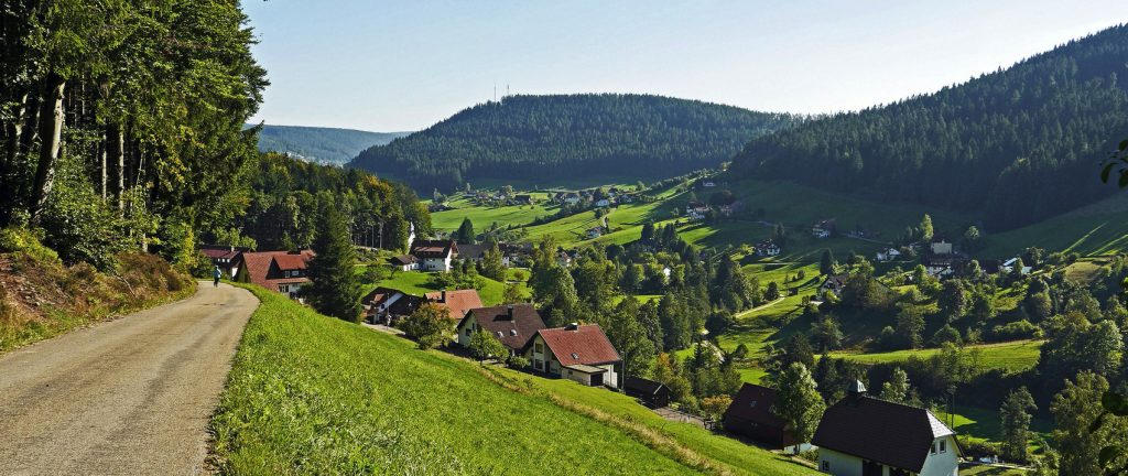 Black Forest Rail-Drive Holiday
